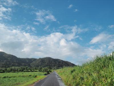 奄美大島の道