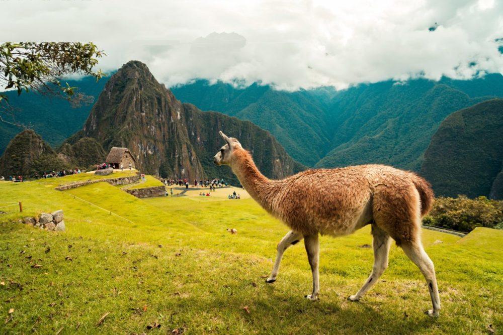 ペルーの景色