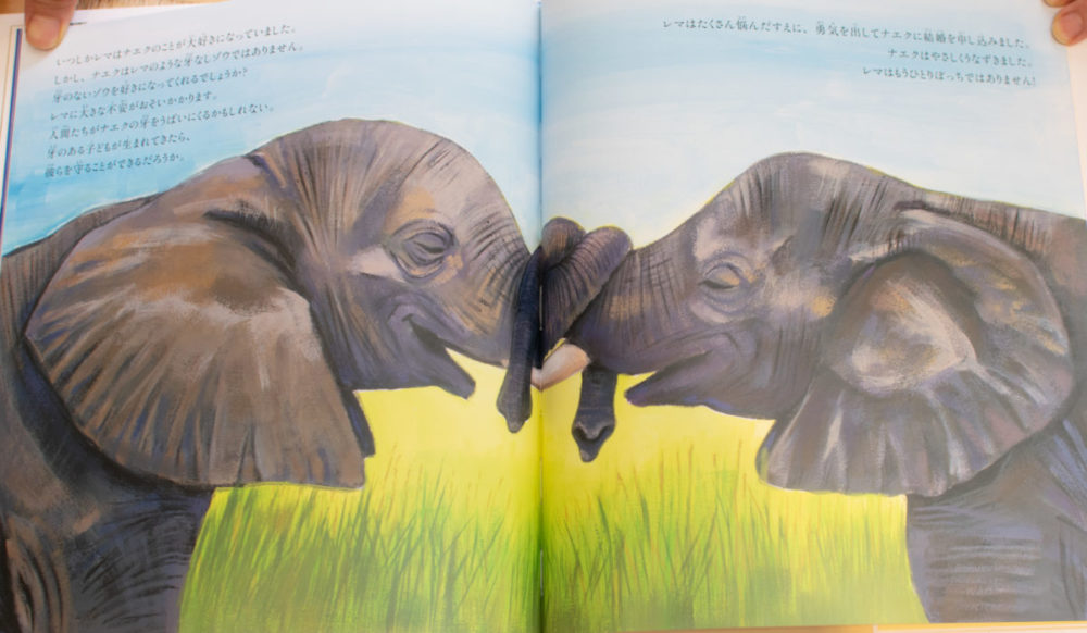 アフリカゾウの涙山脇さま_インタビュー_ぞうの絵本02