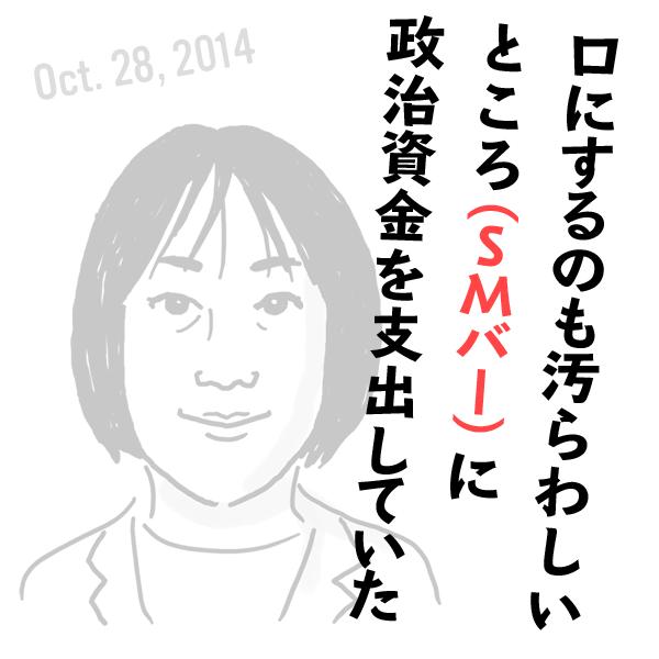 民主党・菊田真紀子の失言(2014年10月28日)